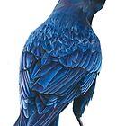 midnight crow  by casshanley
