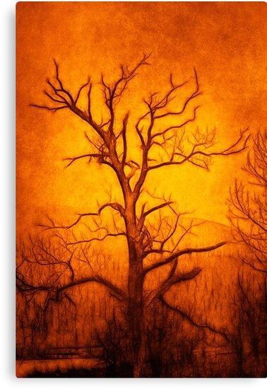 Tree of Enlightenment by derekbeattie