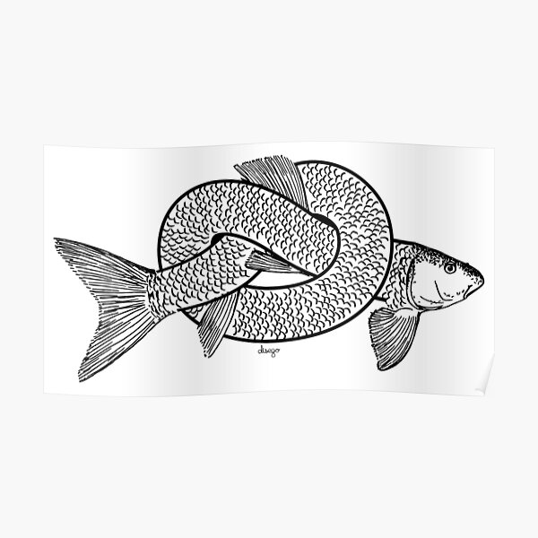 knot fish disego Poster