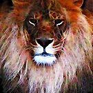 King Leo by shutterbug2010