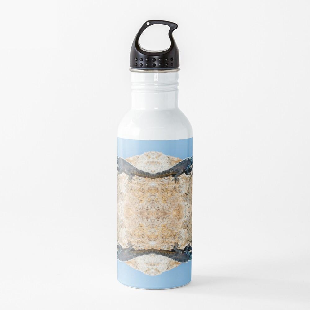 4 Lizards On A Floating Rock Water Bottle