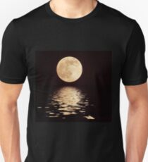 Perigee Moon With Flood Filter T-Shirt