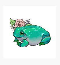 Schöner Frosch Fotodruck