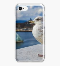Modern Seagul iPhone Case/Skin