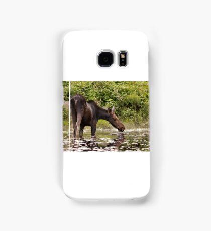 Moose in pond - Algonquin Park Samsung Galaxy Case/Skin