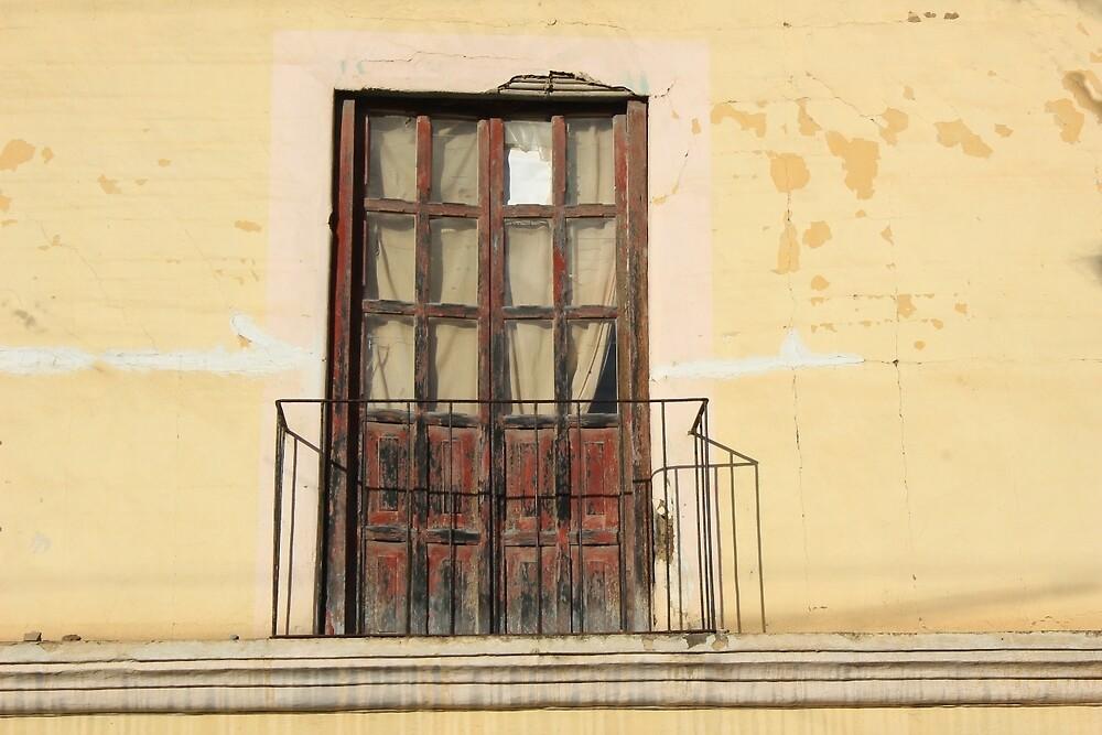 Weathered Balcony Door by rhamm