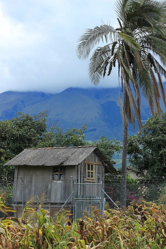 Small House on a Farm by rhamm