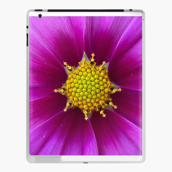 Cosmos iPad Skin