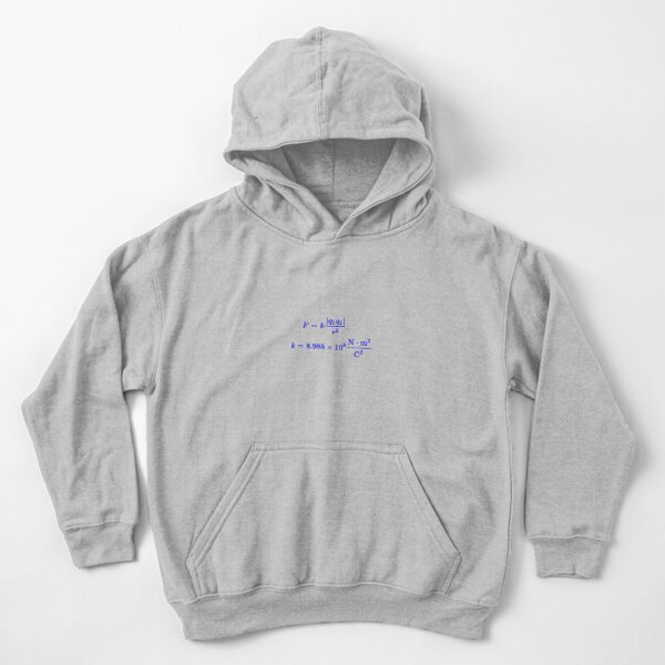 Coulomb's Law Kids Pullover Hoodie