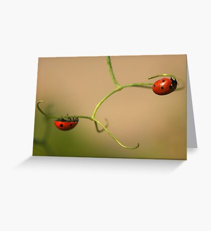 The high wire act Greeting Card