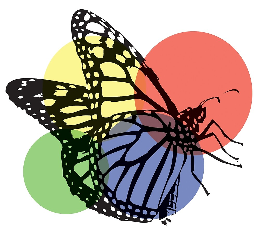 Butterfly Colors by Rockett Graphics