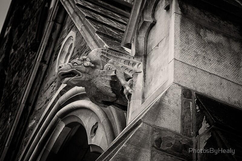 Gargoyle by Photos by Healy
