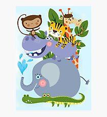 Zoo Safari Wild Animals Giraffe Elephant Monkey Hippo Tiger Photographic Print