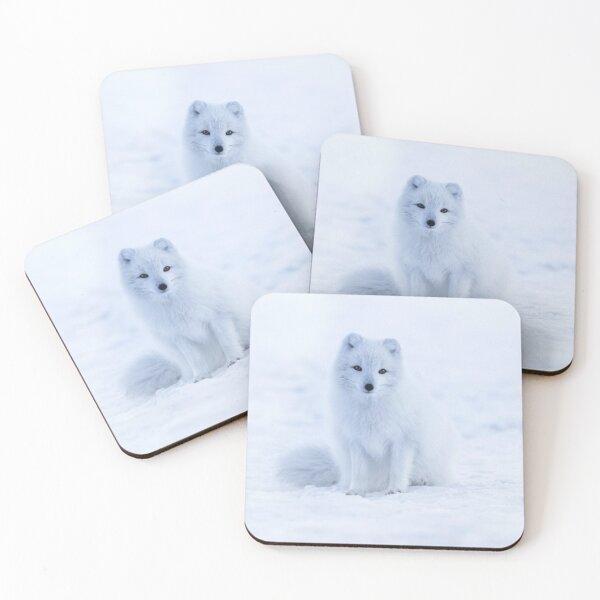 Arctic Fox Coasters (Set of 4)