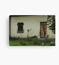 Window and Door in a Building Canvas Print