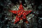 Red Star Of Chernobyl by Alex Preiss