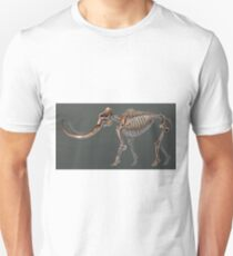 Mammuthus Primigenius Skeletal Study (No Labels) T-Shirt