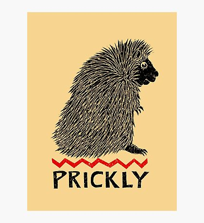 Prickly Porcupine Photographic Print