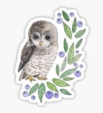 A cute owl with blueberries Sticker