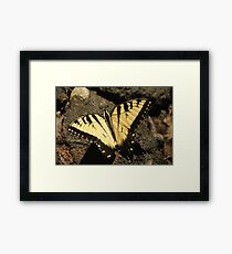 Butterfly the Vamp Slayer Framed Print