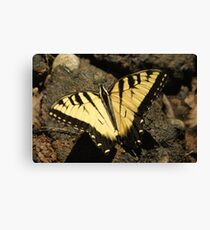 Butterfly the Vamp Slayer Canvas Print
