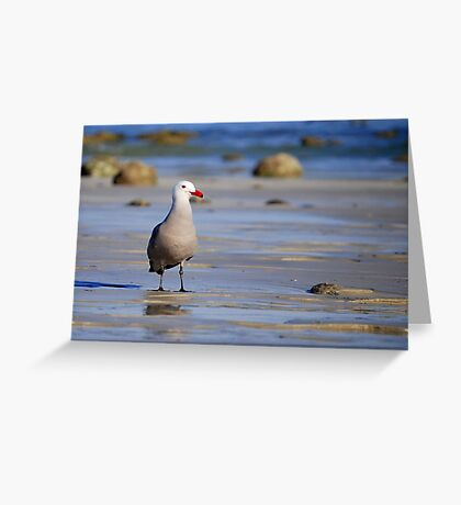 A Bad Company Seagull Greeting Card
