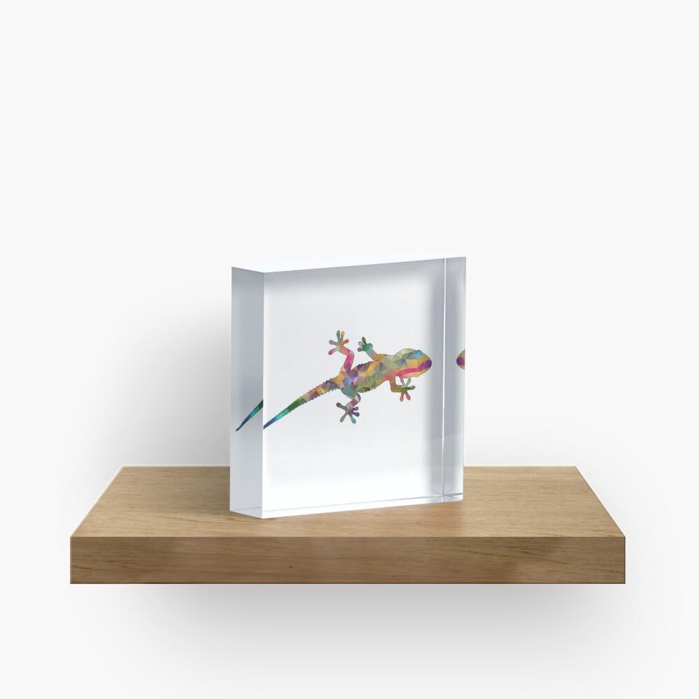 Colourful Gecko Print Acrylic Block