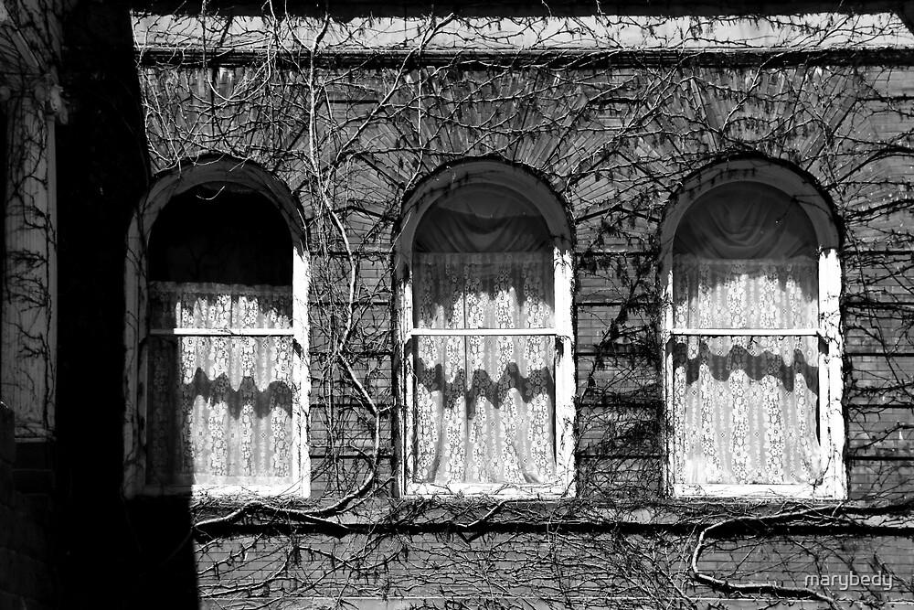 Harrington Inn Windows BW by marybedy