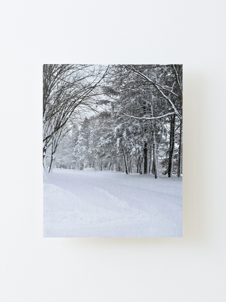 Alternate view of Winter Drive Mounted Print