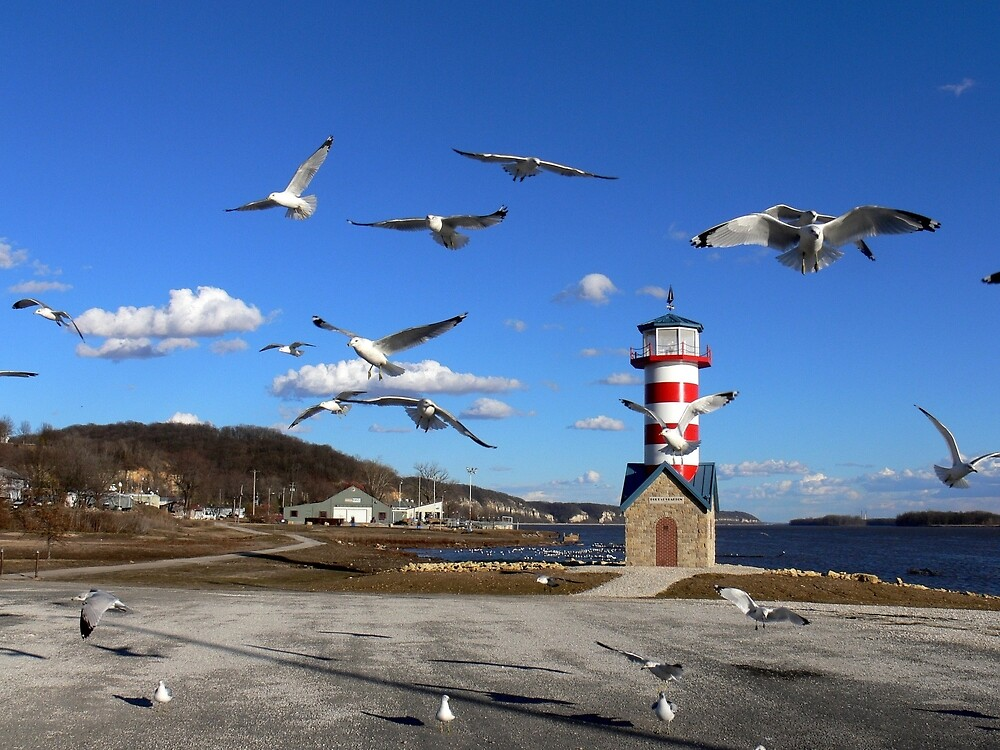 River Lighthouse for Seagulls by LjMaxx