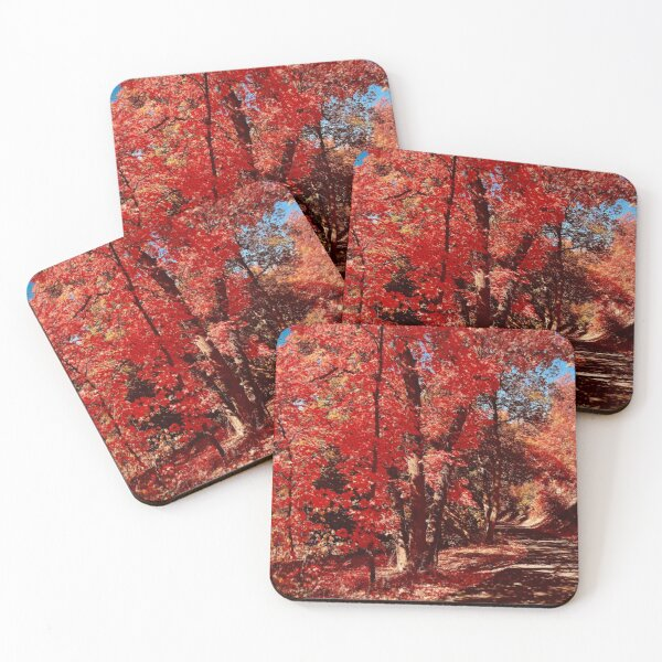 Red Foliage Coasters (Set of 4)