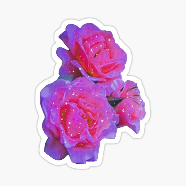 Aesthetic Pink Rose Sticker Sticker