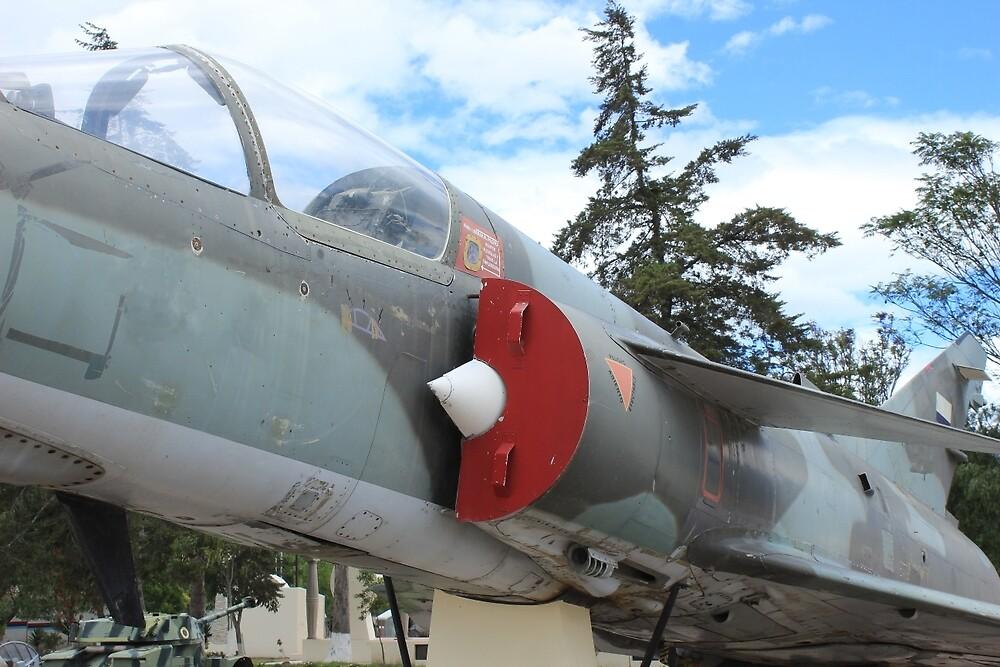 Military Jet on Display by rhamm