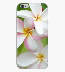 Plumeria Pink White Frangipani Tropical Hawaiian Flower Floral Fine Art iPhone Case