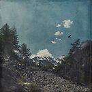 Hike a Mountain by Dirk Wuestenhagen