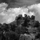 Spirits Stonehenge Monochrome by Wayne King