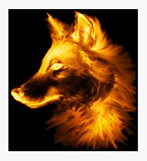 Gold wolf Photographic Print