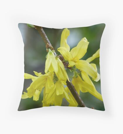 Forsythia Throw Pillow