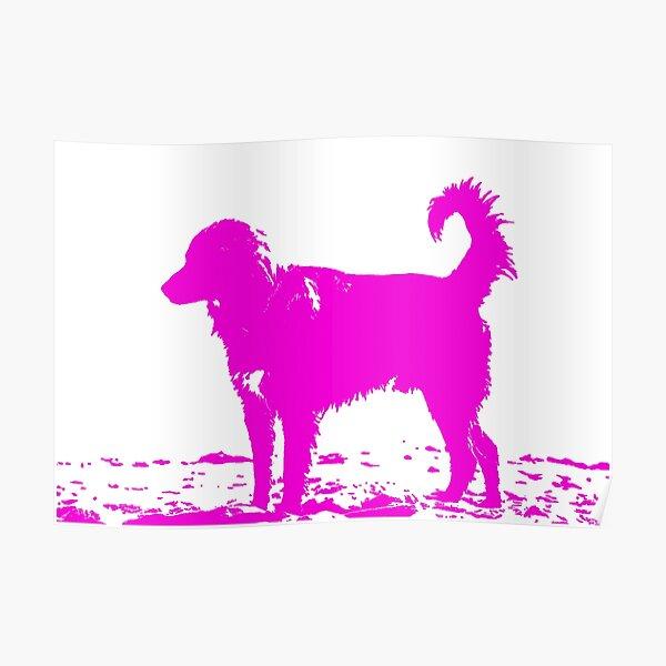 Pop dog Poster