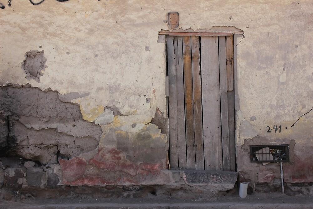 Old Door by rhamm