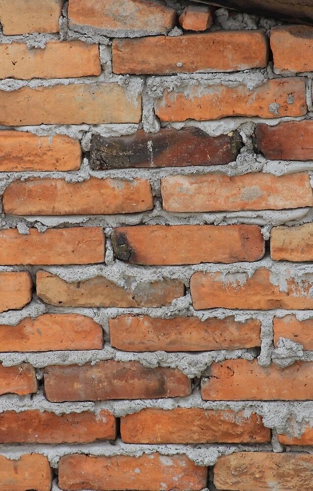 Adobe Brick Wall by rhamm