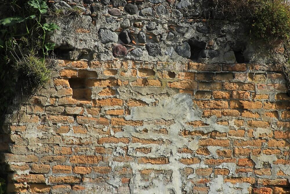 Old Brick Wall by rhamm