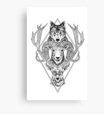 Wolf Ram Hart Canvas Print