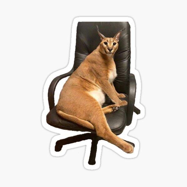Big Floppa chair Sticker