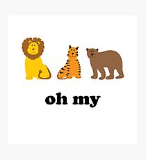 Lions Tigers Bears Oh My Photographic Print