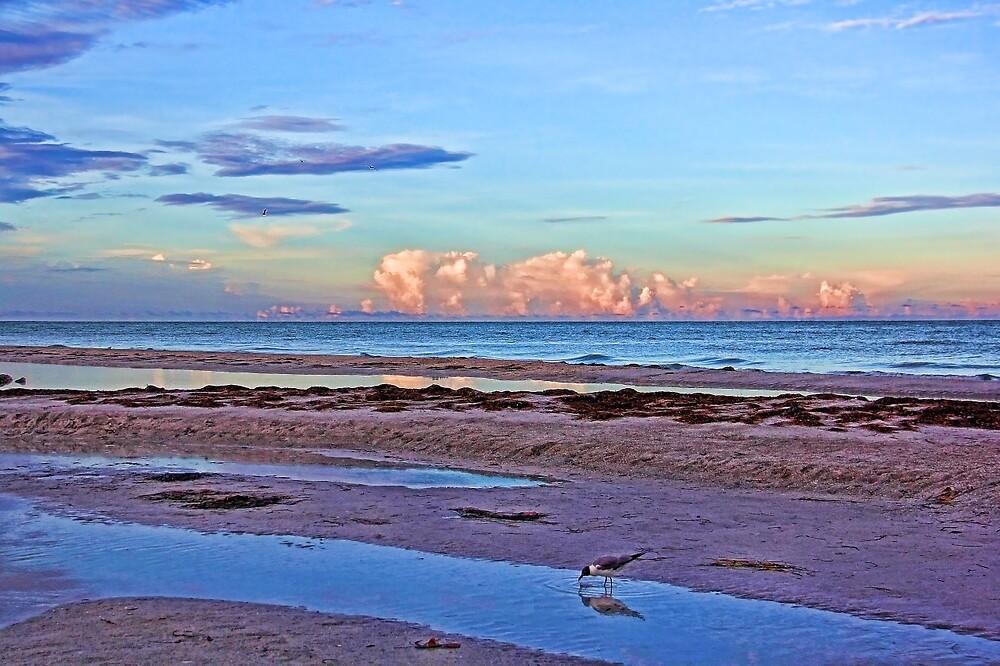 A Coastal Morning by HHPhotographyFL