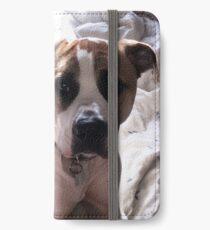American Bulldog cross Northern Inuit  iPhone Wallet/Case/Skin
