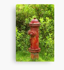 Rust Covered Fire Hydrant Canvas Print