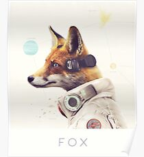 Star Team - Fox Poster