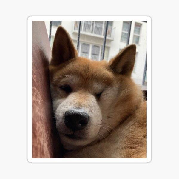 Comfy Maru Sticker